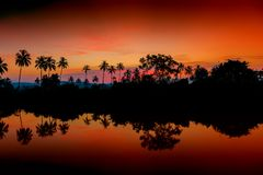 Beautiful morning landscape. In the tropics Stock Photo