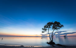 Beautiful morning landscapes with blue sky at the beach. Beautiful morning with blue sky and smooth water Stock Photography