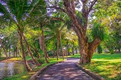 Free Beautiful Morning Light In In Lumpini Park Stock Photos - 70744873