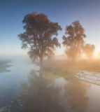 Beautiful morning mist landscape near a  river. Royalty Free Stock Photography