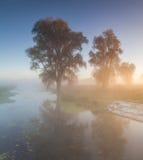 Beautiful morning mist landscape Royalty Free Stock Photos