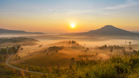 The beautiful morning misty. At Phetchaboon ,Thailand Stock Photography