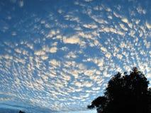 Beautiful morning sky. Beautiful, cloud mottled morning sky Stock Photos