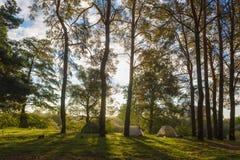 Beautiful morning sun rays illuminate tourist tents in autumn fo Royalty Free Stock Photos & Beautiful Morning Sun Rays Illuminate Tourist Tents Stock Image ...