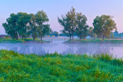 Beautiful morning with trees on the riverbank. Royalty Free Stock Images
