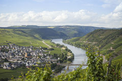 Beautiful mosel valley Stock Images