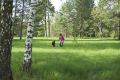 Beautiful mother and her cute son walking in the park. At sunny day Royalty Free Stock Image