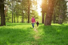 Beautiful mother and her cute son walking in the park. At sunny day Royalty Free Stock Photo
