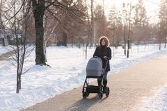 Beautiful mother walking in the park with her little baby in stoller. Woman dressed in blue jaket with hood and jeans stock image