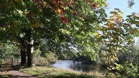 Beautiful Motherwell park with river Clyde in Scotland, footage. Beautiful Motherwell park with river Clyde in Scotland, autumn time, footage stock video