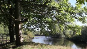 Beautiful Motherwell park with river Clyde in Scotland, footage stock video