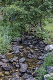 Beautiful motion blurred water stream landscape in the green forest Stock Photos
