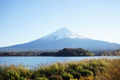 The beautiful mount Fuji in Japan Royalty Free Stock Photo