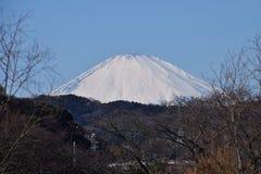 Mount Fuji. Beautiful Mount Fuji snow capped stock image