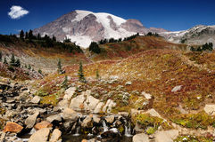 Beautiful Mount Rainier Royalty Free Stock Photography
