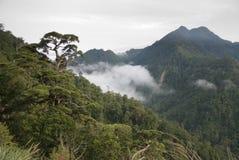 Beautiful mountain stock images