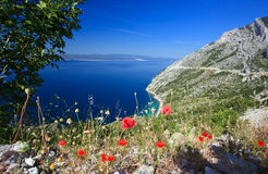 Beautiful Mountain Bay With Poppies Stock Photo