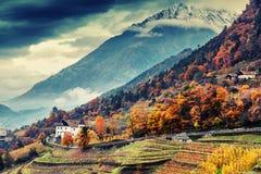 Beautiful mountain and city landscape, South Tyrol, Italy, Dolomites, surroundings Merano stock photos