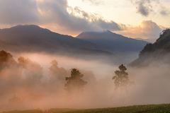 Beautiful Mountain with cloud and mist at dawn Stock Photos