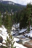 Beautiful Mountain Creek in Winter Royalty Free Stock Image