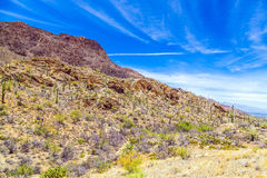 Beautiful mountain desert landscape with cacti. Near Tuscon, Arizona royalty free stock images