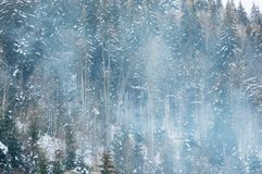 Beautiful snowy mountain forest in boiler plant fumes. Beautiful mountain forest in boiler plant fumes stock photos