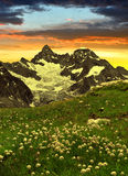 Beautiful mountain Gabelhorn, Switzerland. Beautiful mountain Gabelhorn in the foreground blooming cotton grass, Pennine Alps, Switzerland stock photos