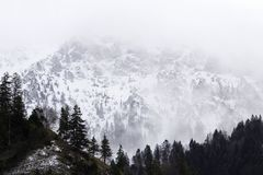 A Misty Mountain royalty free stock photos