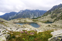 Beautiful mountain glacial lakes, Slovakia Royalty Free Stock Photo