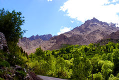Beautiful mountain and greenery in Ladakh Royalty Free Stock Photos