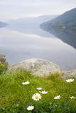 Beautiful mountain lake Royalty Free Stock Photos