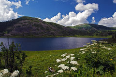 Beautiful mountain lake. Bright blue sky and flowers Royalty Free Stock Photography