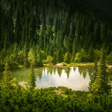 A beautiful mountain lake landscape in Tatry. Slovakia stock photography