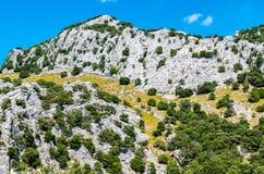Beautiful mountain lake Panta de Gorg Blau, Mallorca, Spain Stock Photos