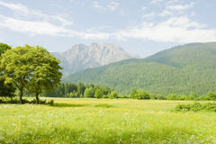Beautiful mountain landscape Royalty Free Stock Photo
