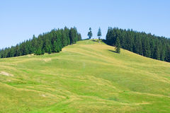 Beautiful mountain landscape. Green meadow and forest stock photography