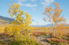 Beautiful mountain landscape in autumn royalty free stock photography