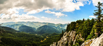 Beautiful mountain landscape. Blue skies and green trees Stock Photography