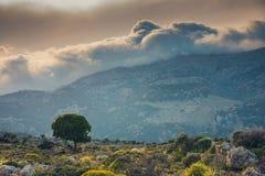 Beautiful mountain landscape, Crete, Greece Stock Photography