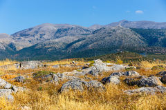 Mountain landscape of Crete near Malia, Greece. Beautiful mountain landscape of Crete near Malia, Greece Stock Photography