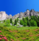 Beautiful mountain landscape in Dolomites Royalty Free Stock Photography