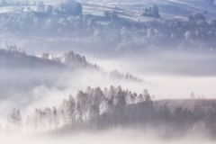 Beautiful mountain landscape of a foggy morning with trees Royalty Free Stock Photo