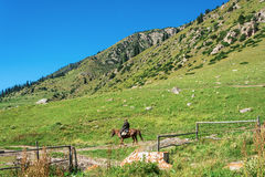 Beautiful mountain landscape with horseman in the foreground, Ky Stock Photography