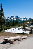 Beautiful mountain landscape Mt. Rainier National Park Royalty Free Stock Image