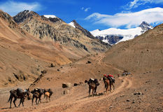 Beautiful Mountain landscape near Aconcagua. With hikers in front trekking as seen in Mendoza, Argentina, South America royalty free stock photo