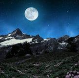 Beautiful mountain landscape in night. Stock Photos