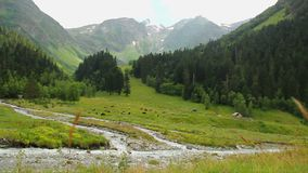 Beautiful mountain landscape, peaceful valley, stream flows down. Stock footage stock video