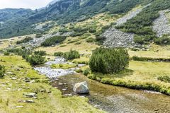 Beautiful Mountain Landscape  in  Pirin  Mountain,Bulgaria. Summer river in Pirin mountain,Bulgaria.Hills with Pines Stock Image