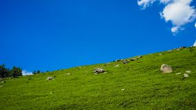 Beautiful mountain landscape of Sonamarg, Jammu and Kashmir state,. India Royalty Free Stock Photography
