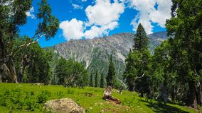 Beautiful mountain landscape of Sonamarg, Jammu and Kashmir state, Royalty Free Stock Images